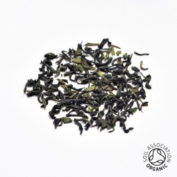 Canton Tea Darjeeling losse thee
