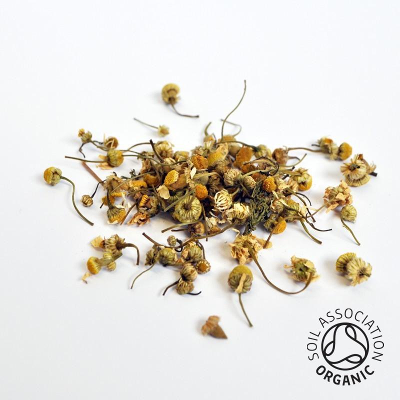 Canton Tea Chamomile