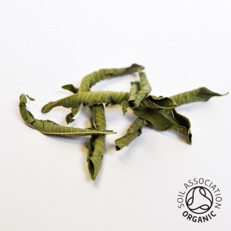 Canton Tea Jekka's Lemon Verbena