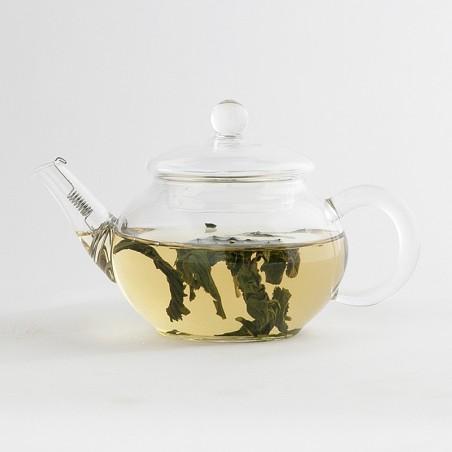 Canton Tea Shen Glass theepot