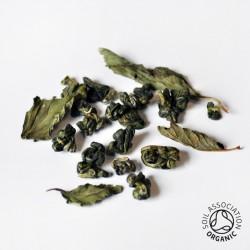 Canton Tea Moroccan mint