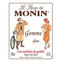 Monin Gom siroop