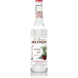 Monin Gin siroop