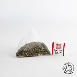 Canton Tea Moroccan Mint